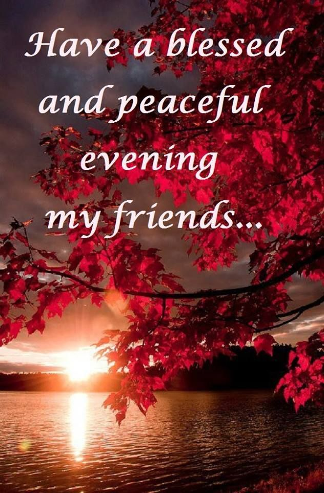 18 May 2015 Good Evening 晚上好 My Blog