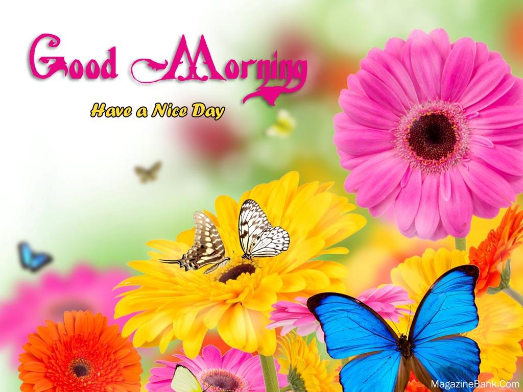 03 October 2015 Good Morning My Blog