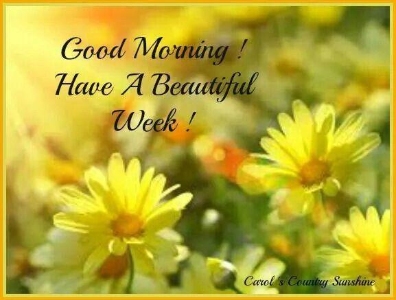 Good Morning Monday Have A Nice Week Archidev