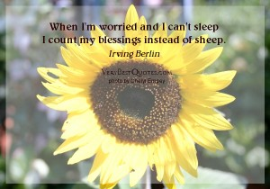 1131798357-Count-my-blessings-quotes-when-Im-worried-and-I-cant-sleep