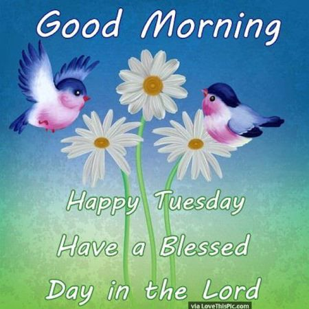 243756-Good-Morning-Happy-Tuesday-Have-A-Blessed-Day-In-The-Lord