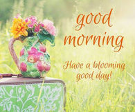 250359-Good-Morning-Have-A-Blooming-Good-Day