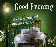 241344-Good-Evening-Have-A-Wonderful-Blessed-Night