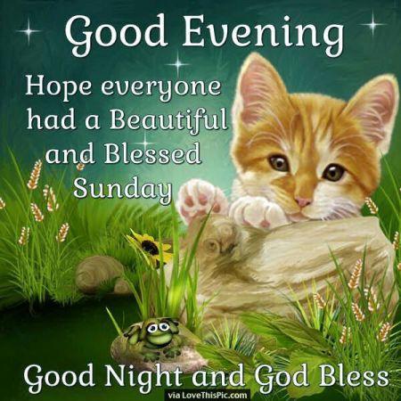 251180-Good-Evening-Hope-Everyone-Has-A-Beautiful-Sunday