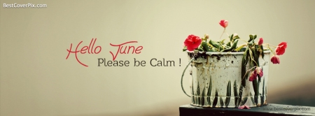 hello-june-please-be-calm-fb-cover-photo