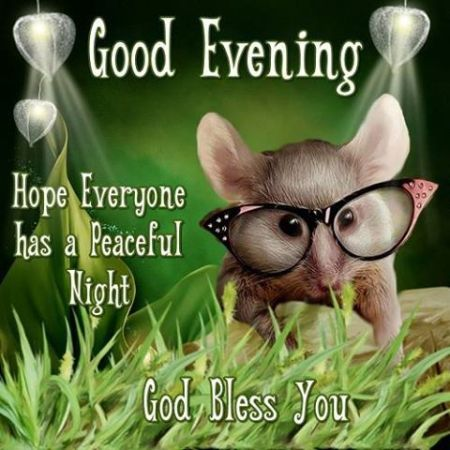 248778-Good-Evening-Have-A-Peaceful-Night-God-Bless-You