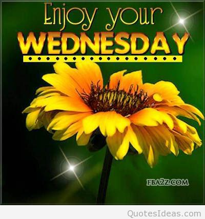 wednesday-comment-graphic-have-a-happy-Wednesday-humpday-quotes-for-facebook-wed-status-for-fb-flower-family-friendly-wed-meme