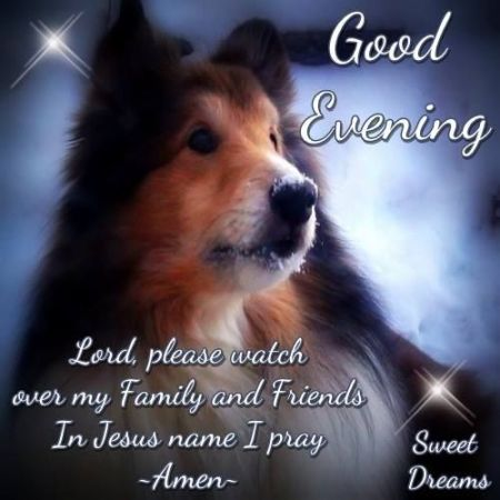 234443-good-evening-lord-please-watch-over-my-friends-and-family