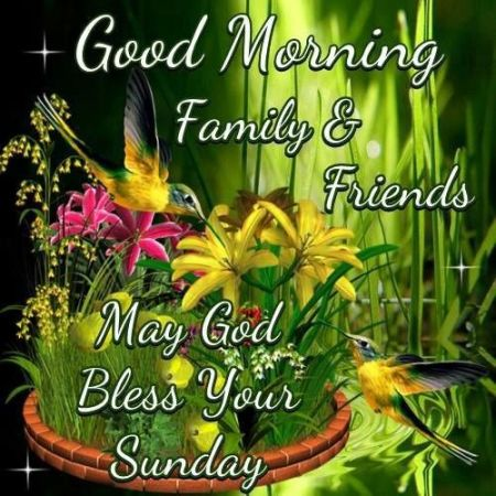 271448-good-morning-sunday-family-and-friends