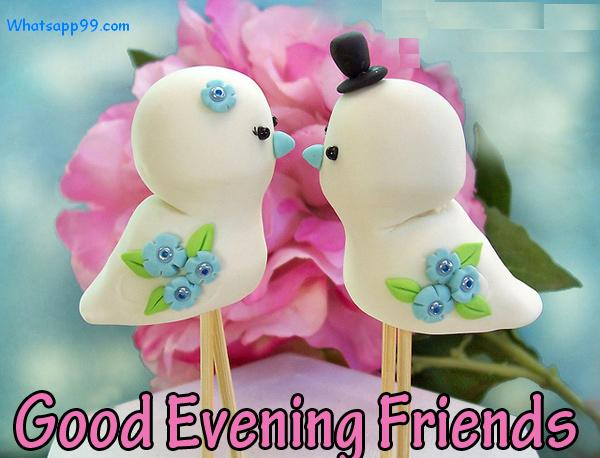 Charming Love Birds Good Evening My Blog