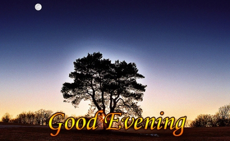 good-evening-pics-quotes-sms