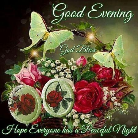 259919-good-evening-hope-everyone-had-a-peaceful-night
