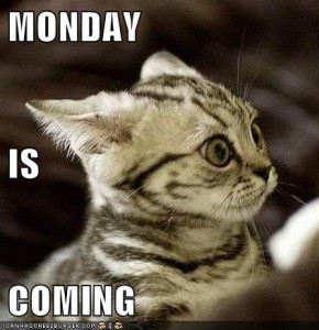 monday-is-coming