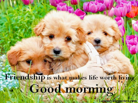 good-morning-friendship-messages
