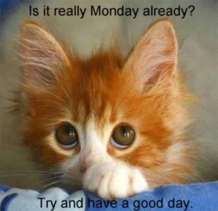 116520-is-it-monday-again