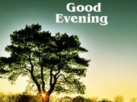 good_evening