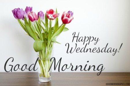 happy-wednesday-1