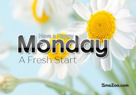 have-a-happy-monday-a-fresh-start