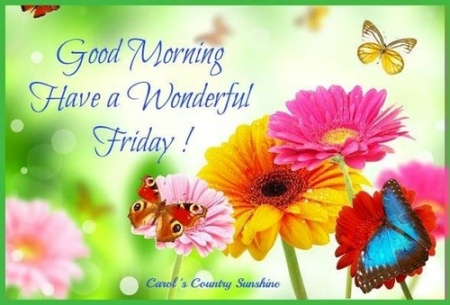have-a-wonderful-friday-good-morning