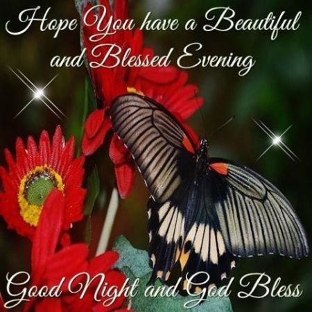 269065-hope-you-have-a-beautiful-and-blessed-evening