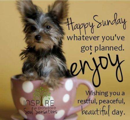 enjoy-sunday
