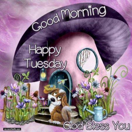 Happy-Tuesday-Good-Morning-Wish-2-600x600