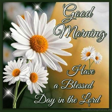 Good-Morning-Have-A-Blessed-Day-In-The-Lord