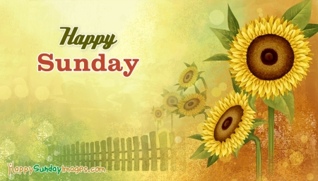 happy-sunday-52650-15206