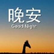 Night WA