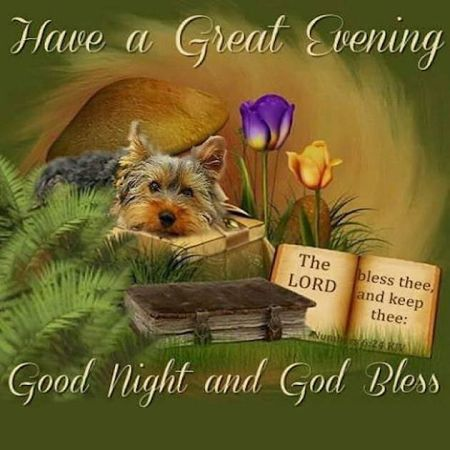 286380-Have-A-Great-Evening-Good-Night-And-God-Bless-