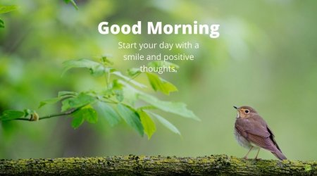 Good-Morning-Friends-Start-your-day-with-a-smile-and-positive-thoughts.-FB