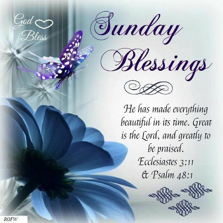Good Morning Happy Blessed Sunday Images Archidev